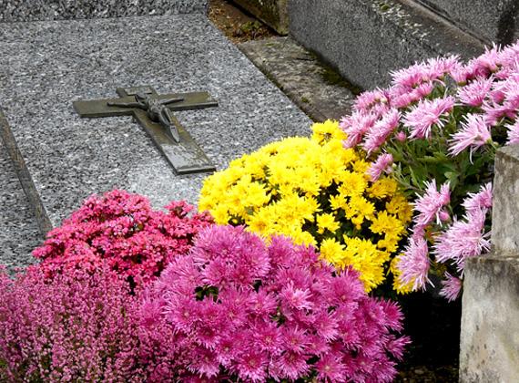 Az Országgyűlés fogyasztóvédelmi bizottsága május 13-án javasolta a szociális temetés bevezetését, amit 14-én el is fogadott a parlament.