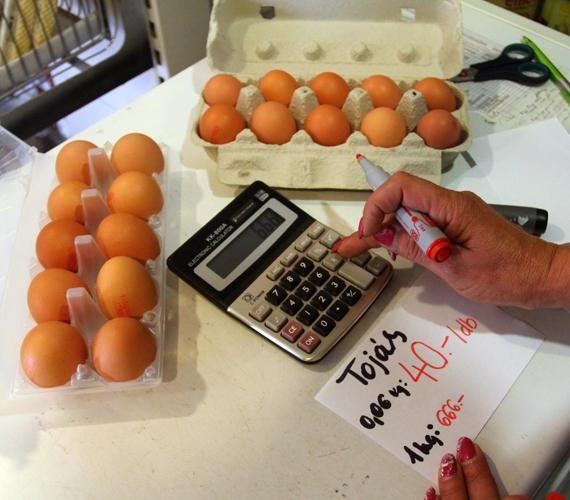 A tojás kilónkénti ára. Ezentúl fel kell tüntetni ezt is.