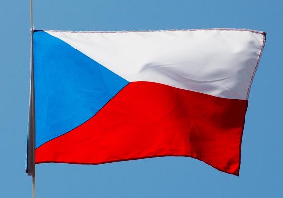 Október 25-én megkezdődtek az előrehozott képviselőházi választások Csehországban. A szavazás oka, hogy a Petr Necas vezette jobbközép kormány korrupciógyanús ügyek miatt júniusban lemondásra kényszerült.