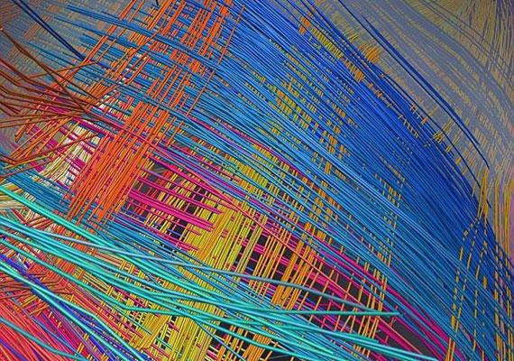 A pálcikaszerű 3D-s kép egy majom agyában mutatja meg az idegpályák kapcsolatait.