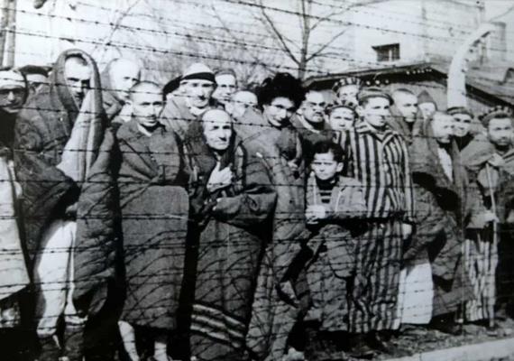 Rosszabb körülmények között tartották a foglyokat, mint az állatokat. A táborokat szögesdrót választotta el a külvilágtól.