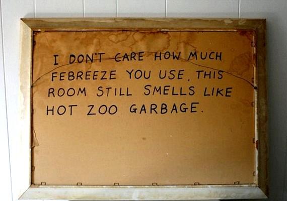 - Nem érdekel, mennyi légfrissítőt használtok, a szoba még mindig olyan szagú, mint a forró állatkerti hulladék.