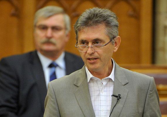 Bencsik János a Fidesz frakciójának tagja a parlamentben, de mostanában a kormányt ért bírálatai kapcsán figyelhetett fel rá a közvélemény. Múlt vasárnap saját honlapján jelentetett meg kormányértékelő írást, melyben meglehetősen kritikusan ítéli meg a kabinet működését. Bírálja a közoktatás átszervezésének módját, és szerinte a közmunkaprogram nem segít a szegénység felszámolásában. Decemberben 300 ezer forintra büntette saját frakciója Bencsiket, mert nemmel szavazott egy fideszes indítványra.