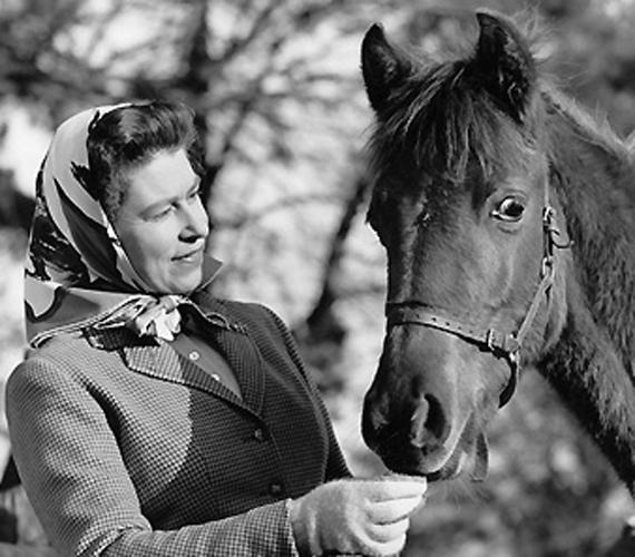 A királynő 38 évesen, 1964-ben.