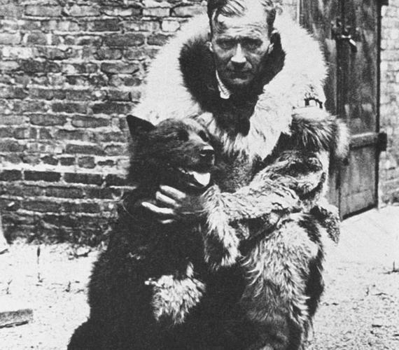 Balto, a szibériai husky az 1925-ös diftériajárvány idején a legzordabb körülmények között segített célba juttatni a gyógyszert.