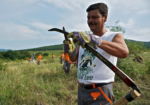 A község új polgármestere közmunkaprogramot indított, melyben negyven, főként roma származású ember kapott munkalehetőséget.