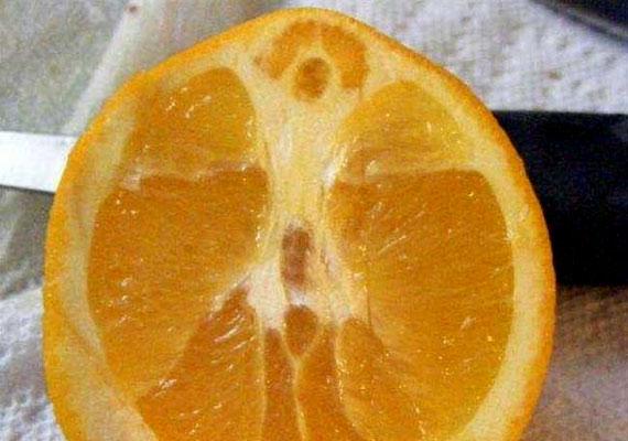 Akik hisznek benne, azt mondják, Jézus mindenhol ott van - még a gyümölcsben is.