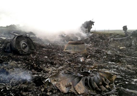 Július 17-én lezuhant egy polgári repülőgép Kelet-Ukrajna térségében 295 személlyel a fedélzetén. A gép a malajziai légitársaság amszterdami járata volt, mely 10 kilométer magasan repült, amikor a vizsgálatok szerint rakétatámadás érte a háborús övezet fölött. A nyugati világ közvéleménye egyértelműen az oroszbarát felkelőket és a mögöttük álló Moszkvát tette felelőssé az esetért. Korábban ugyanebben a térségben már lelőttek két katonai gépet a lázadók, ezért is tiltották meg a kijevi hatóságok, hogy 9,7 kilométernél alacsonyabban repüljenek a polgári gépek.