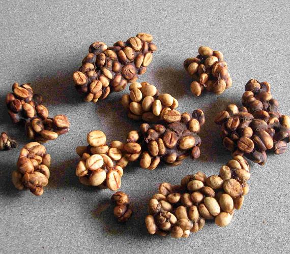 Az indonéz kopi luwak méregdrága kávé. A pálmasodró nevű macskaféle előbb elfogyasztja a kávébabot, mely végső formáját az állat ürülékében kapja meg.