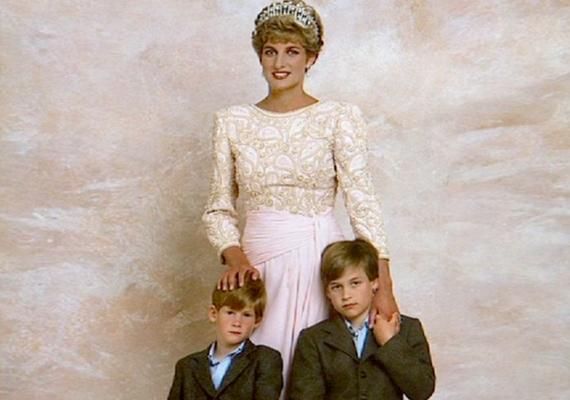 Diana jó anya volt, nagyon szeretetteljes kapcsolata volt két fiával, Vilmossal és Harryvel.