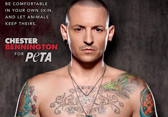 Chester Bennington, a Linkin Park énekese a PETA nevében azt hirdeti, hogy tetoválást viselni sokkal szexibb, mint bundát.