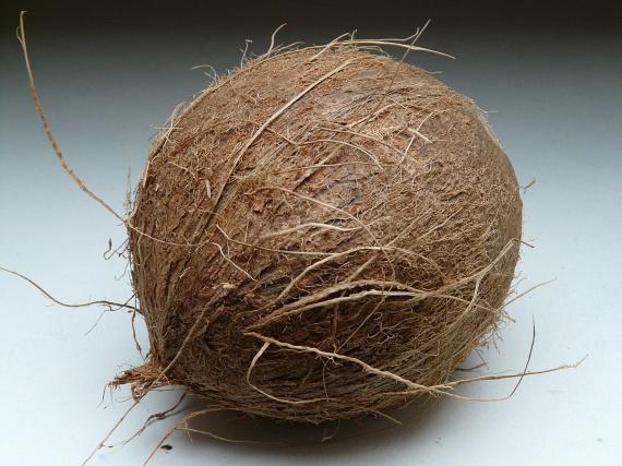 Mielőtt belekezdenélA kókuszdió elkészítése valójában a kiválasztásnál kezdődik. Mivel azonban a polcokon tornyosuló gyümölcsökből csak a külső vastag, barna héj látható, könnyű mellényúlni. A legegyszerűbb tanács erre az esetre: rázd meg egy kicsit a diót! Ha ugyanis lötyögést hallasz benne, fiatal gyümölccsel van dolgod, így nyugodtan megveheted azt.