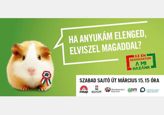 A baloldali ellenzék cuki állatokkal próbálja invitálni a március 15-i ünnepségükre az embereket. Volt már kiscica, kiskutya, kismalac, most egy tengerimalac, mi jöhet még?
