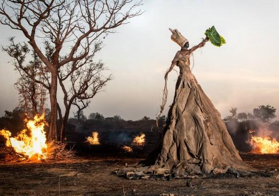 A környezetszennyezés mellett az erdőirtás problémája is megjelent a fotókon.