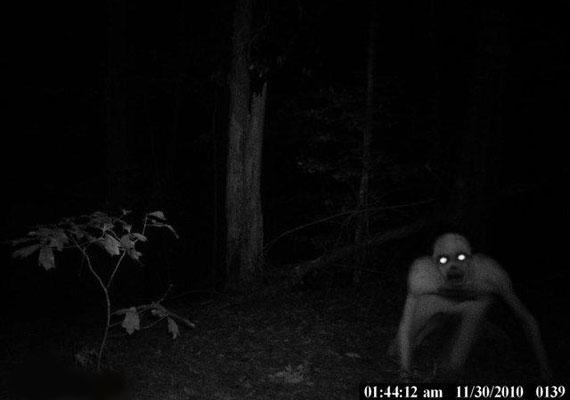 A hátborzongató képet egy louisianai vadász találta az éjjeli kamerája által készített felvételen. A villámgyorsan mozgó, kísérteties lényről több tévécsatorna is beszámolt 2010 decemberében, és bár sokak szerint a kép hamisítvány, megnyugtató magyarázat máig nem született.
