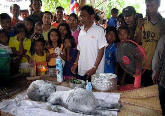 A thai faluban született bizarr lényt embereknek járó szertartással temették el a helyiek.