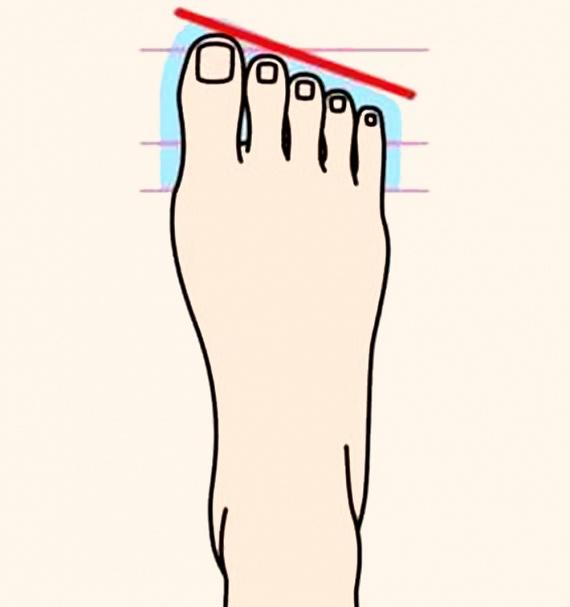 Ha a nagylábujjadtól kezdve fokozatosan csökken a lábujjaid hossza, nyúlánk lábfejed van. Titokzatos és magának való személyiség vagy, ugyanakkor nagyon temperamentumos is, gyakori hangulatváltozásokkal.