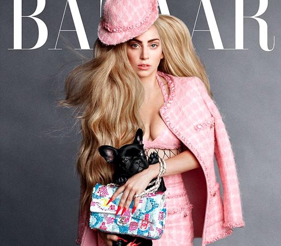 Merész ruhában, szolid sminkkel pózol Lady Gaga a Harper's Bazaar magazin címlapján kutyusával, Asiával.