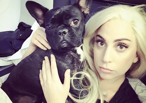 Néhány nappal korábban még így nézett ki Lady Gaga, aki évekkel fiatalabbnak tűnik, ha nincs mindenféle furcsaság az arcán.