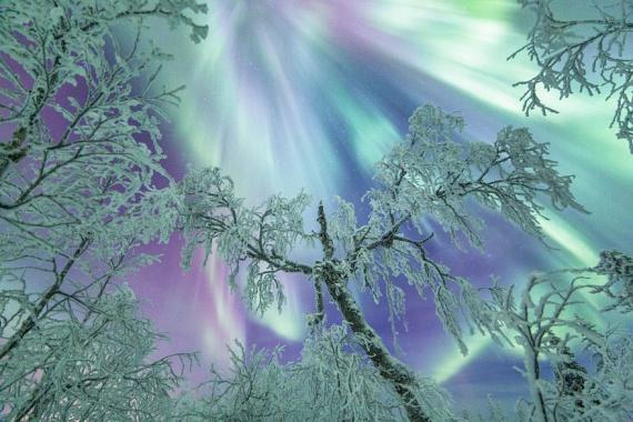 A fényjelenségek legszebbike az északi fény, más néven aurora borealis, amely késő ősztől kora tavaszig látható a sarkkörön túl, és attól nem nagy távolságokban. Így például Lappföld területén.