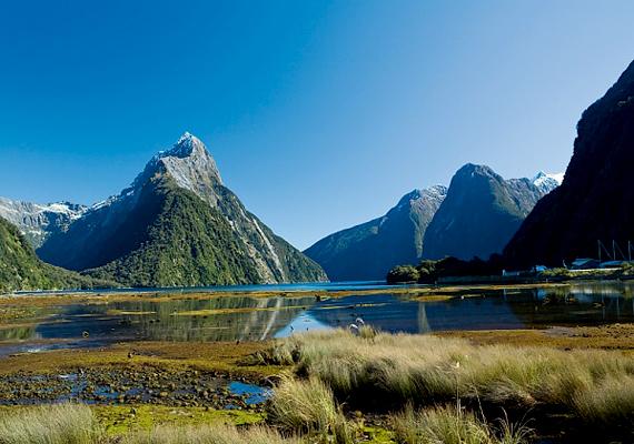 Szintén az idei évben, április 17-én biztosítottak szabad utat a melegek házasságának Új-Zélandon, ami a 14. ország volt a világon, ahol elfogadták a törvényt.