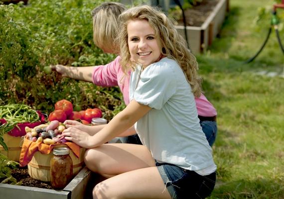 Ha szereted a természetet és a vidéki hangulatot, böngészd végig a mezőgazdasági hirdetéseket, mert ilyen munkakörökbe is keresnek diákokat. Vállalhatsz kerti munkát, de akár állatokkal is dolgozhatsz.