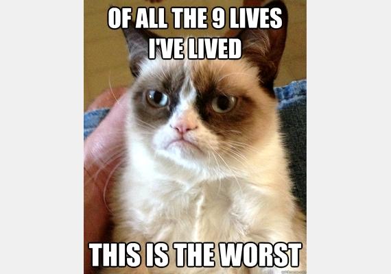 Mind a kilenc életem közül ez a legrosszabb.