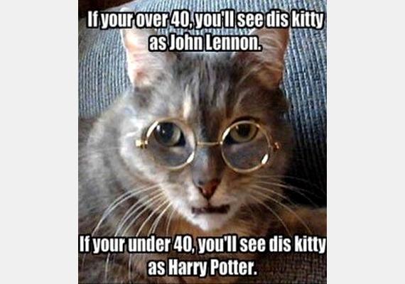 Ha 40 felett vagy, ezt a cicát John Lennonnak látod. Ha 40 alatt, akkor Harry Potternek.