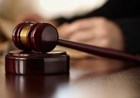 2011-ben összesen 258 millió forint kártérítést fizetett az állam a strasbourgi bíróság ítéletei alapján. Ekkor az ítéletek többsége a magyar bírósági szervek késlekedéseiből fakadt. Elmarasztalta a magyar államot a testület például azért, mert valaki 17 évig pereskedett egy ingóság megszerzéséért. 14 400 euró kártérítést kellett fizetnie az államnak.