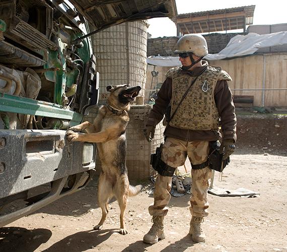 Ugyanitt egy magyar tűzszerész egy teherautót ellenőriz robbanóanyag-kereső kutyájával.
