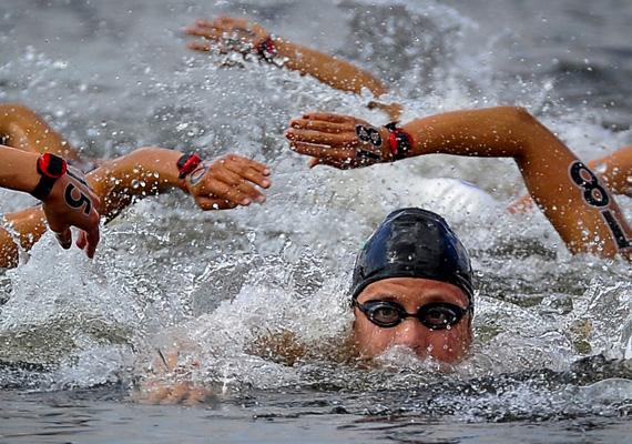 Risztov: a Londonban megrendezett 2012-es nyári olimpián, augusztus 9-én Risztov Éva megnyeri a 10 kilométeres hosszútávúszást.Illyés Tibor első helyezést ért el a Sport kategóriában ezzel a képével.