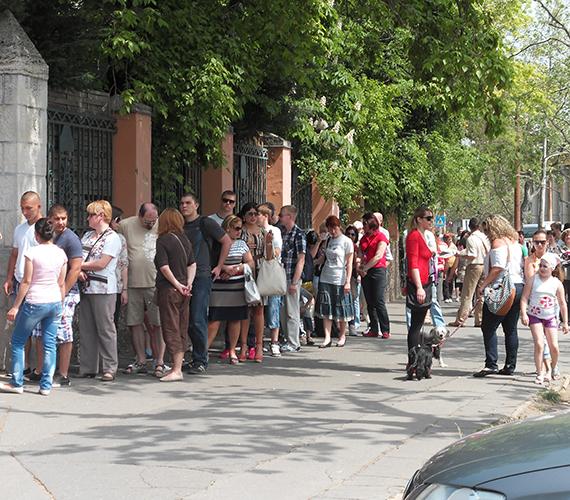 Kígyózó sorok álltak az Állatkert előtt.