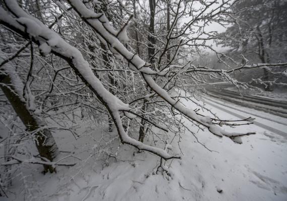 Komoly mennyiségű hó esett, ami meg is maradt.