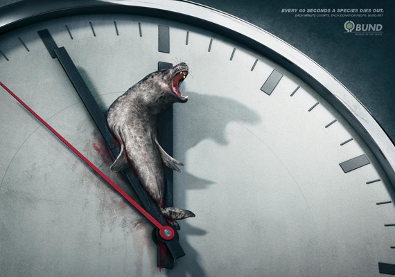 60 másodpercenként kihal egy állatfaj. Minden perc számít. Valóban, de inkább érdemes ellátogatni egy állatvédő alapítványhoz és segíteni.