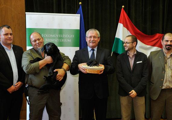 """""""Ezúton tájékoztatjuk Önöket, hogy Fazekas Sándor földművelésügyi miniszternek egy rekordméretű szarvasgombát ajándékoznak, melyet Bagi Iván és Fekete Oszkár, a Truffleminers Kft. tulajdonosai adnak át. Az átadásra elkíséri őket Milla nevű keresőkutyájuk is. Az adományozáson jelen lesz Papp Béla, a szarvasgomba megtalálója, Pócs János, országgyűlési képviselő, Tari András Jászivány polgármestere és Dégi Zoltán a Nógrádi Erdő és Faipari Gazdaság vezérigazgatója"""" - nem mentünk, azóta bánjuk. Ez a fotó azonban kárpótol."""