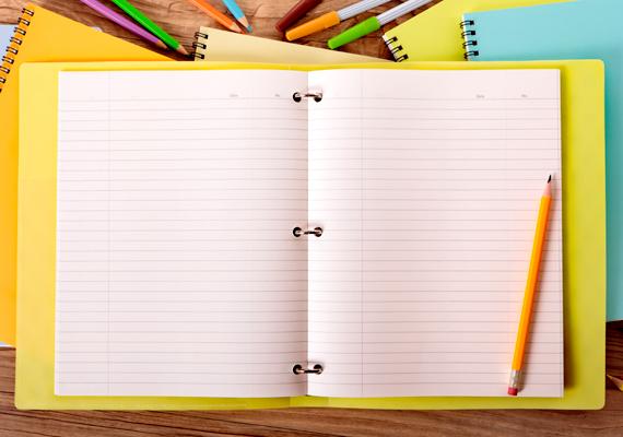 A háztartási napló vezetése a hatékony költségvetés és a spórolás alapköve. Amellett, hogy segítségével tudatosan irányítod kiadásaidat, ha nemcsak vezeted, de elemzed is, könnyen lehet, hogy hónapról hónapra többet tudsz majd félretenni. Ide kattintva olvashatsz róla bővebben.