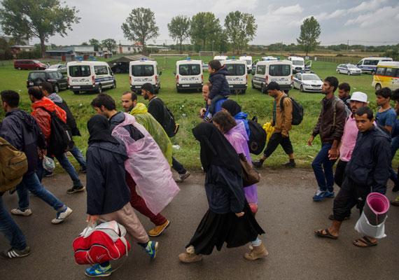 Szerbia felől Tovarnikba, azaz Felsőtárnokra igyekeznek a Röszkén megállított menekültek. Innen a horvát hatóságok szállítják őket a magyar határra, ahol már a magyar rendőrök várják őket, hol különvonatokkal, hol pedig különbuszokkal.