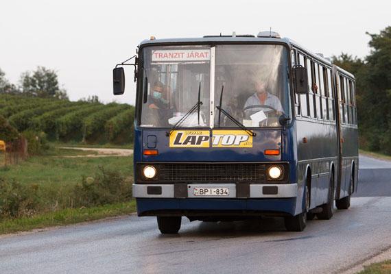 A buszsofőrök legtöbbször túlórában vállalják, hogy a menekültek csoportjait elszállítsák a hatóságok által megadott helyekre. Először Budapesten vetették be a BKV sofőrjeit, akik Hegyeshalomig mentek a városi buszokkal. Jelenleg Beremend és Harkány között járnak a fővárosi sofőrök. Az Egységes Közlekedési Szakszervezet szerint nem bánják, hogy menekülteket kell fuvarozniuk, csak azzal van bajuk, hogy akár tíz órát is vezetniük kell egyhuzamban, és egyelőre nem világos, hogyan fizetik ki őket a pluszmunkáért.