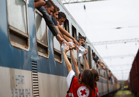 A Magyar Vöröskereszt aktivistái vizet osztanak a menekülteknek a Gyékényes vasútállomáson, Zákányban. Sok segélyszervezet munkatársai és aktivistái a határ menti településekre is elkísérték a menekülteket.