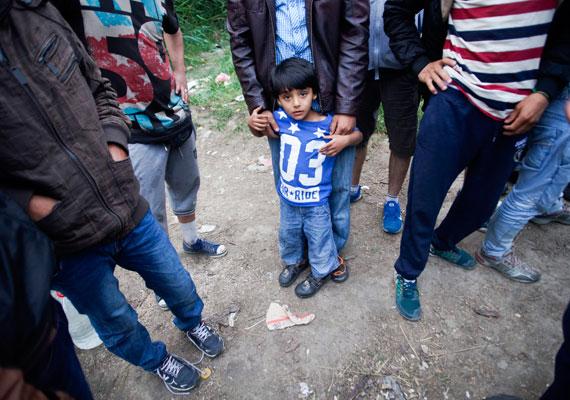 Afgán menekültek Szabadka határánál, egy régi szeméttelep mellett. Itt várakoznak arra, hogy Magyarországra, ezzel pedig az unióba jöhessenek. Ezt a részt is érintené a kormány magyar-szerb határra tervezett kerítése.