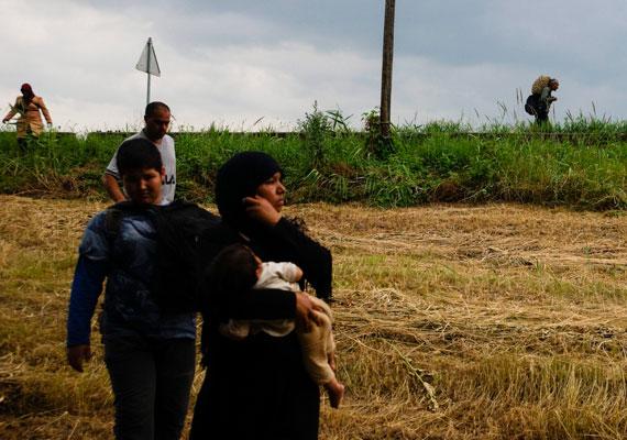 Afgán menekültek Magyarkanizsa határában, az anya láthatóan egy pár hónapos csecsemővel a karján. A menekültek közül sokan éheznek és szomjaznak, mire megteszik a több ezer kilométeres távot az EU határáig.