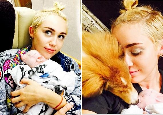 Az énekesnő imádja az állatokat, több kutyája és egy malaca is van.