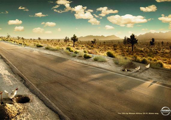 A Nissan autók gyorsaságával senki nem mert versenyre kelni. Még a tyúkoknak is több eszük van, mint hogy egy ilyen járgánnyal kezdjenek a főúton.