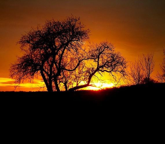 Tüzesen izzó naplemente Vérteskozmán, a Vértes szívében.