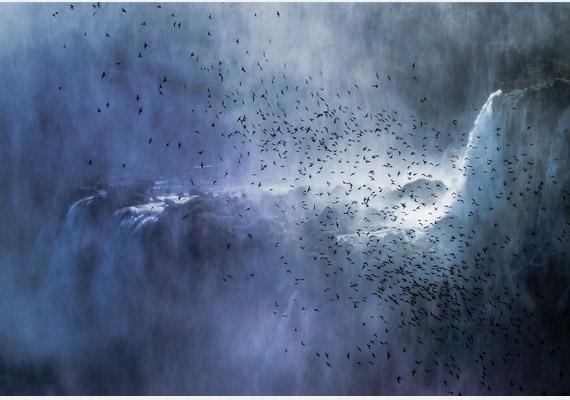 Az elsőre kísértetiesnek tűnő képen egy csapat fecskét látsz az argentínai Iguazu-vízesésnél. A képet készítette: Francesco Filippo Pellegrini.