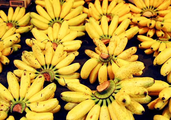 A hivatalos szabályok szerint nem tanácsos olyan banánt árusítani a piacokon, mely abnormális görbülettel rendelkezik.