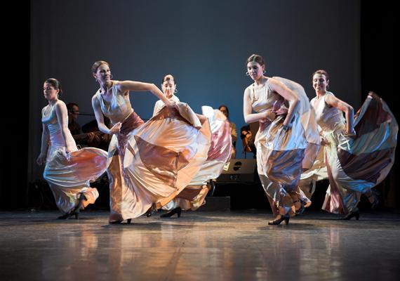 A szeretett hivatás, a táncművészet - a flamenco - képes elbűvölni, egységbe fonni különböző népeket, varázslatos erejével mindenkit meghódít.