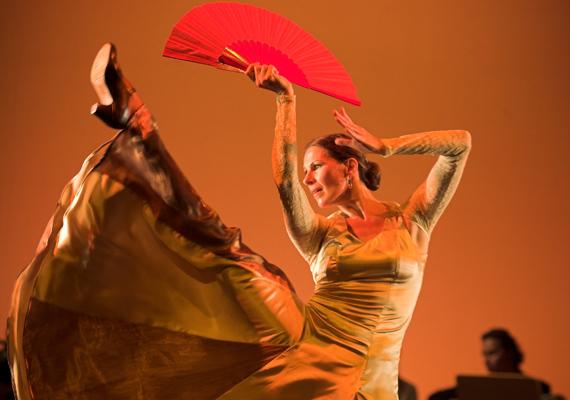A lüktető ritmus, a szenvedélyes érzelmek szuggesztív jelenléte, sodró lendületével magával ragad táncost és nézőt egyaránt.