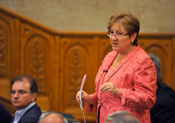 Lamperth Mónika egykoron a Magyar Szocialista Párt - MSZP - színeiben politizált. 2002-től 2006-ig belügyminiszter, később az önkormányzati és területfejlesztési tárcát, majd a szociális és munkaügyi minisztériumot vezette. 2014 tavasza óta nem tagja a parlamentnek, azóta étrend-kiegészítő termékek értékesítésével foglalkozik a bevezetőben említett cégnél.