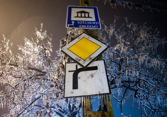 A budapesti Diana utca, ahol a táblákon és az ágakon is vastagon áll a jég a heves ónos eső miatt.
